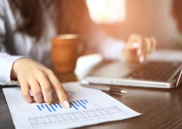 Individualių įmonių apskaita